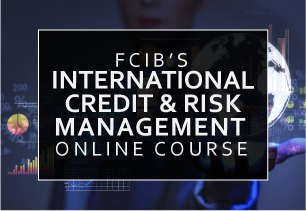 International Credit & Risk Management Course