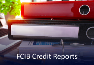 Credit Reports