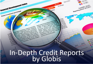 In-Depth Credit Reports by Globis